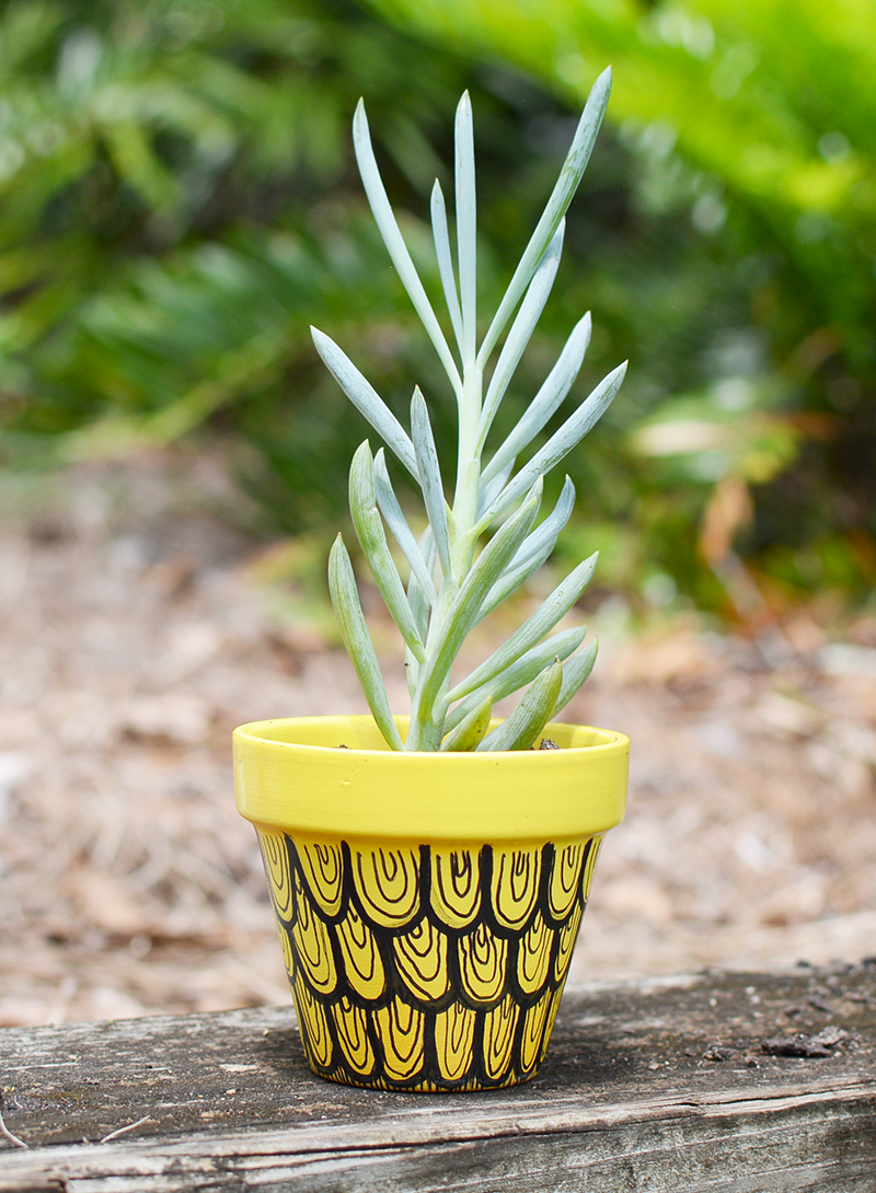 Pineapple Swirl Doodle Pot by The Fuzzy Pineapple